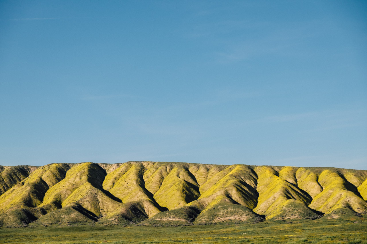 The Temblor Range washed in yellow at Carrizo Plain. Let's Photo Trip